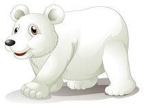 A big white bear Stock Photography