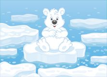 Polar bear on an ice floe. Big white bear sitting on a drifting ice floe in an arctic sea, vector illustration in a cartoon style stock illustration