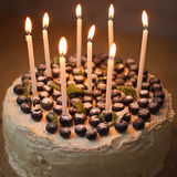 A big white birthday cake with fresh organic blueberries and mint and white candles on the top. Stock Photos