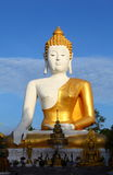 Big White Buddha Royalty Free Stock Image