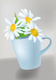 Big white chamomile in a cup Royalty Free Stock Photos