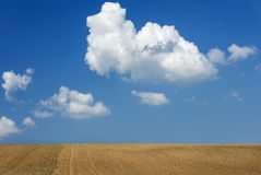Big white cloud float in the blue sky above field Royalty Free Stock Photos