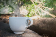 Big white cup coffee or hot drink on the rock under tree shade. And happy morning fresh nature forest background woth copy space stock photos