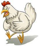 Big white hen Stock Photo