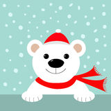 Big white polar bear in santa claus hat and scarf. Merry Christmas Greeting Card.  Royalty Free Stock Photo