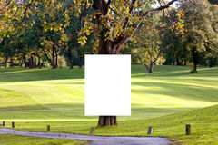 Big white poster on the tree. Royalty Free Stock Photo