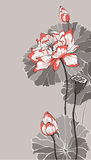 Big white red lotus on grey  illustration Royalty Free Stock Images