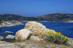 Big white rock and yellow flowers face to Mediterranean sea and mountains on the Calvi coastline in Corsica,France. Big white rock and yellow flowers face the Stock Photo