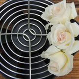 Big white  rose on a metal grate on a wooden   background Stock Images