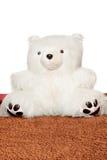 Big white teddy bear Stock Photography