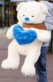 Big white teddy bear. A big white teddy bear in his hands Man Royalty Free Stock Image