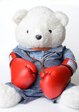 Big white Teddy Bear wear the boxing glove Royalty Free Stock Photo
