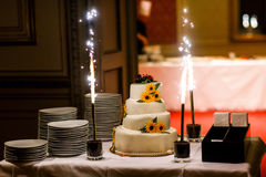 Big white weddin cake decorate sunflowers ladybird and firework Stock Images