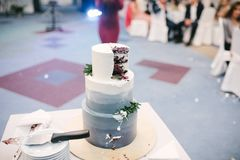 Big white wedding cake with fruit is on the table. Close up dessert marriage beautiful flower decoration cream celebration event design eat fresh food pink stock image
