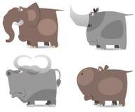 Big wild animals set Stock Photos