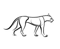 Big wild cat. Cheetah line vector illustration. Big wild cat. Cheetah. Vector illustration. Linear black and white drawing Stock Image