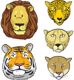 Big Wild Cats Royalty Free Stock Photos