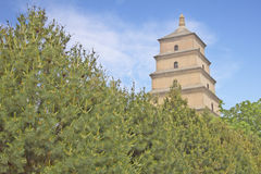 The Big Wild Goose Pagoda Royalty Free Stock Image
