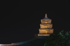 Big wild goose pagoda Stock Image