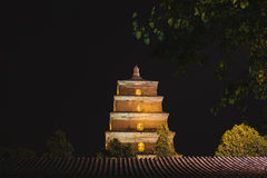 Big wild goose pagoda Royalty Free Stock Images