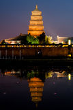 Big Wilde Goose Pagoda at Night portrait Stock Photos
