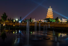 Big Wilde Goose Pagoda at Night stock photography