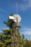 Big windmill and a pine Royalty Free Stock Images