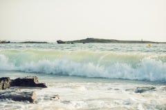 Big windy waves. Stock Image