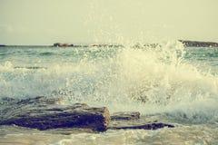 Big windy waves Royalty Free Stock Photos