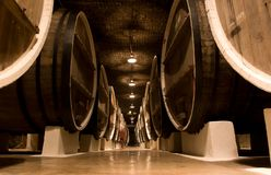 Big wine barrels. Royalty Free Stock Images
