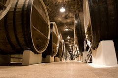 Big wine barrels. Royalty Free Stock Photo