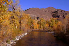 Big Wood River - Ketchum. Big Wood River, autumn colors, near Ketchum Idaho Stock Photo