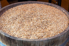 Grains barrel Stock Image