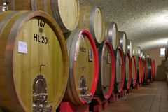 Big wooden barrel in a winery Royalty Free Stock Images