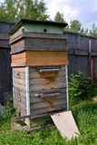 The big wooden beehive costs on a garden site Royalty Free Stock Photo