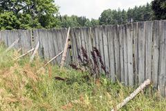 Wooden fence decay Stock Image