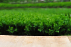 Big wooden table and garden. Big wooden table and spring garden Royalty Free Stock Photo