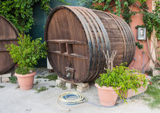 Big wooden wine barrel. In a garden royalty free stock photography