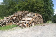 Big woodpile on grass Royalty Free Stock Photography