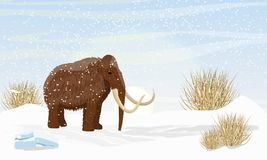 Big woolly mammoth on a plain covered with snow. Dry frozen grass. Prehistory animals. Ice Age. Extinct animals of Siberia, Eurasia and North America royalty free illustration