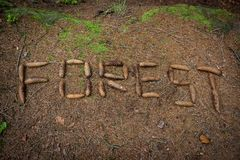 Word forest made by cone on the ground Royalty Free Stock Photos