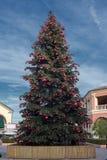 Big xmas tree on blue sky background Stock Image