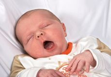 Big Yawn Royalty Free Stock Image