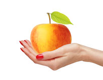 Big yellow apple in woman hand isolated on white Stock Image