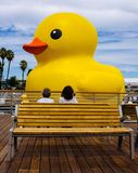 Big Yellow Duck. 17 story yellow duck afloat in harbor with two admirers Royalty Free Stock Photography