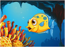 A big yellow fish under the sea inside the sea cave Royalty Free Stock Image