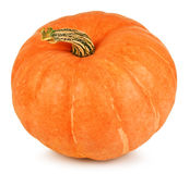 Big yellow pumpkin Royalty Free Stock Images