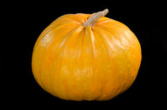 Big yellow pumpkin isolated on black Royalty Free Stock Images