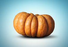 Big yellow pumpkin stock image
