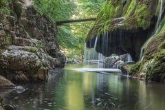 Bigar kaskadnedgångar i Nera Beusnita klyftor nationalpark, Rumänien Royaltyfri Foto